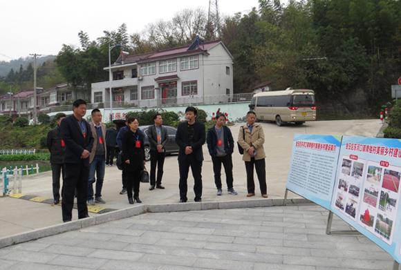市政协委员视察六安茶谷与文化建设融合情况