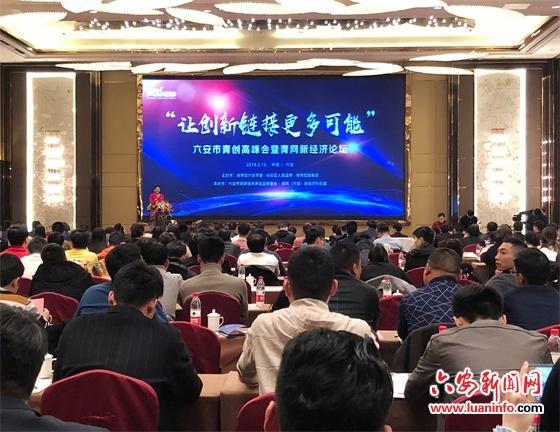六安青创高峰会暨青网新经济论坛举行