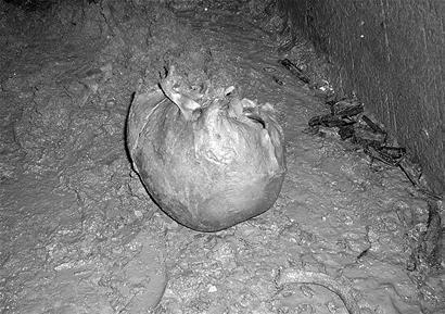 近日在内江城郊的荒山坡发现了一座埋于地下的古墓图片